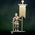 Female knight crusader standard bearer image