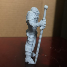 Picture of print of Fantasy medieval knight warrior with great sword