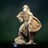Fantasy medieval knight warrior image