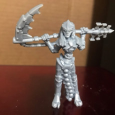 Picture of print of Undead space cyborg lady warrior