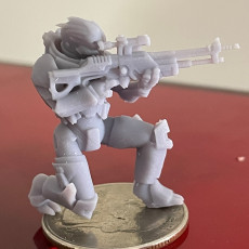 Picture of print of Turian soldier