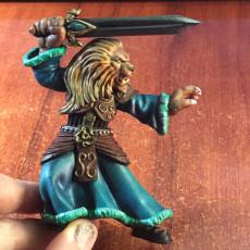 Picture of print of Lion swordmaster