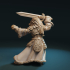 Lion swordmaster image