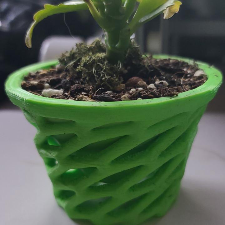 Twist Net Soil Pot