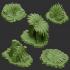 KICKSTARTER- Fantastic Plants and Rocks image