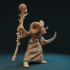Mouflon wizard image
