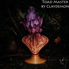 Picture of print of Toadmaster bust