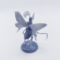 Picture of print of Moth Girl