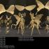 Moth Girl image