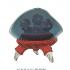 Metroid ( Parasite ) image