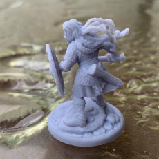 Picture of print of 2 x Shieldmaiden Chieftain Aidda Modular PRESUPPORTED