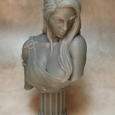 Picture of print of Venus Bust (AMAZONS! Kickstarter)