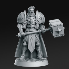 Sir Warrick - Male Paladin - 32mm - DnD -