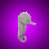Seahorse image