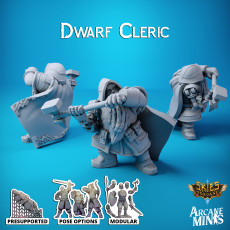 Dwarf Cleric - Merchant Guilds