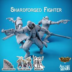 Shardforged Fighter - Merchant Guilds