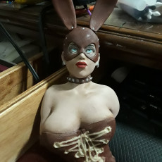 Picture of print of bdsm bunny girl Lara bust