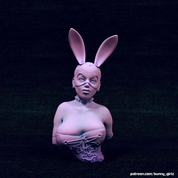bdsm bunny girl Lara bust