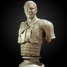 Maximus Decimus Meridius - Gladiator