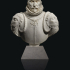 Marble Bust of a Gentleman in Armour image
