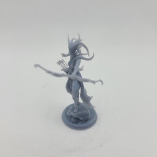 Picture of print of Wood Archer