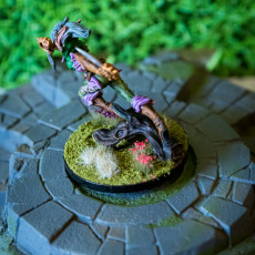 Picture of print of Quicksliver - Fey Fighter - D&D 5e  - 32mm