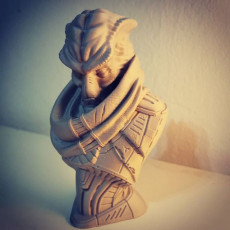 Picture of print of Alien Bounty Hunter bust