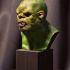 Orc Bust image
