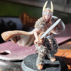 Picture of print of Shield Maiden