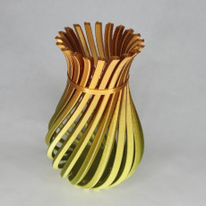 Picture of print of Weird Twisty Vase
