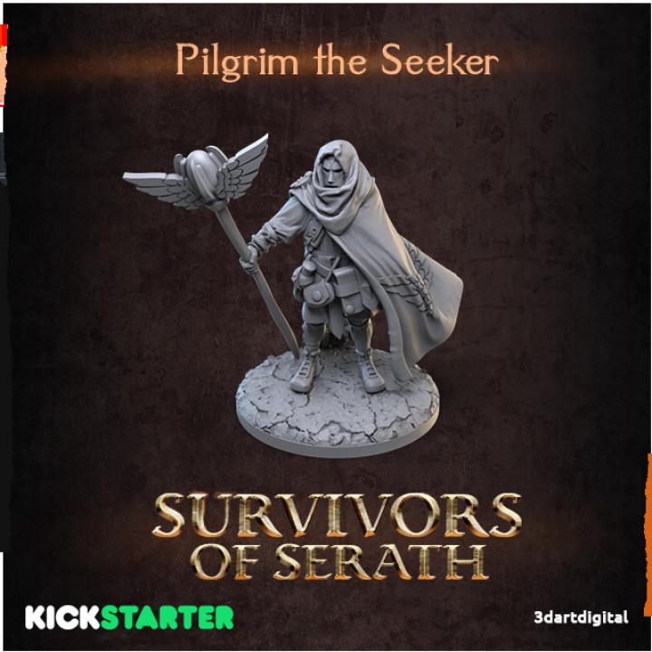 Pilgrim the Seeker's Cover