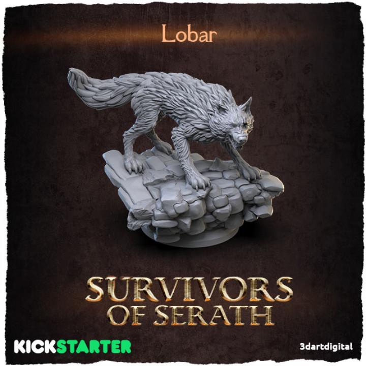 Lobar's Cover