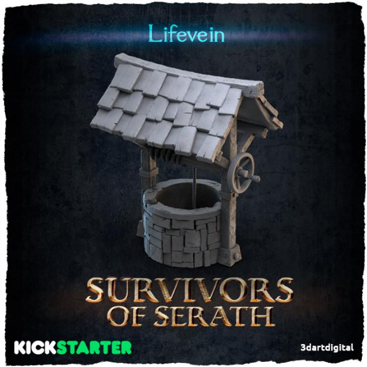 Lifevein's Cover