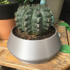 Simple Cactus Planter
