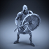 Skeleton - Heavy Infantry - Axe + Round Shield - Defensive Pose image
