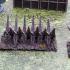 Roman stakes fences image