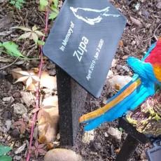 Cockatiel Bird Memorial Stone Grave Marker