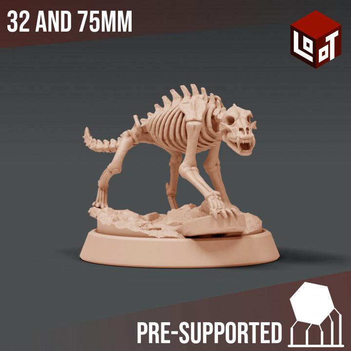 720X720-skeleton-wolf.jpg
