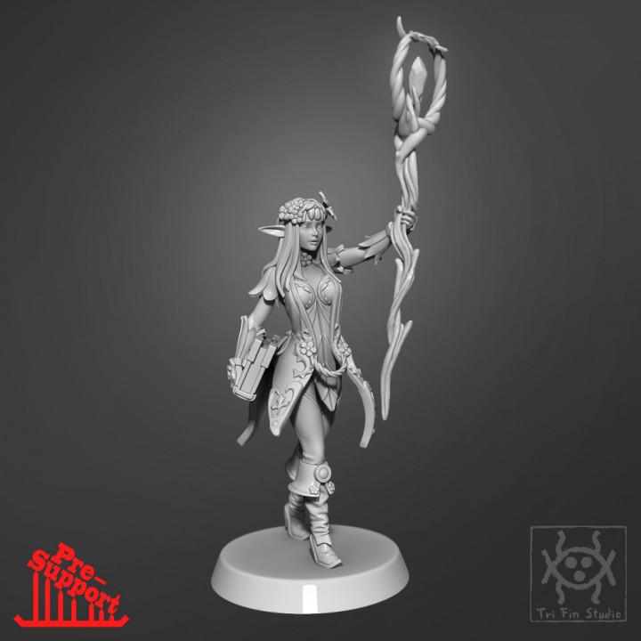 Adventurer - Elf Sorceress