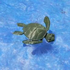 Picture of print of CUTE FLEXI PRINT-IN-PLACE TURTLE