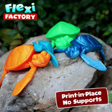 CUTE FLEXI PRINT-IN-PLACE TURTLE