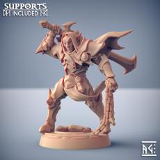 Ashen Alfar Inquisitor - Modular B (male)