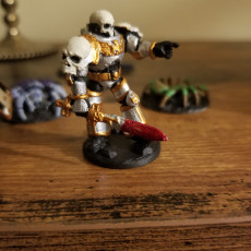 Picture of print of Future Soldiers Space Knights