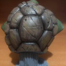 Picture of print of TMNT bust (fan art)
