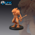 Lizardfolk Warrior Set / Reptile Soldier image