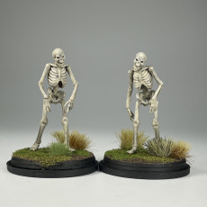 Picture of print of Undead Skeleton Walkers - Tabletop Miniature