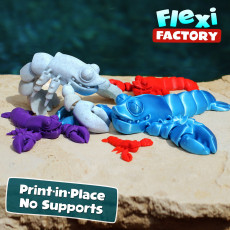 CUTE FLEXI PRINT-IN-PLACE Lobster