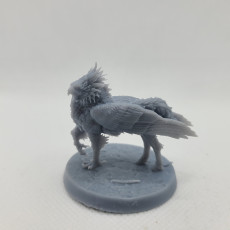 Picture of print of Hippogriff ( Winged version)