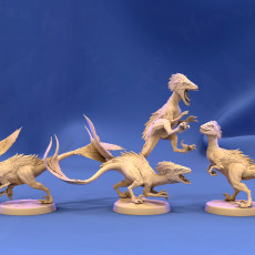 Feathered Raptors (5 pack/ All poses)