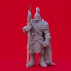 Picture of print of Armored Fighter - Tabletop Miniature